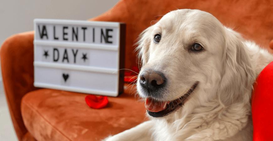 Idei pentru un Valentin's Day de acasa